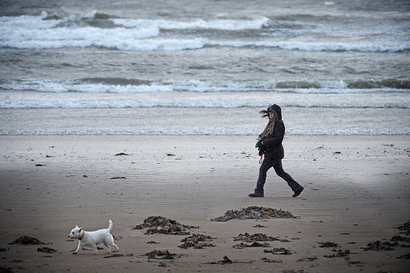 Wind「Stormy Weather To Hit The UK」:写真・画像(16)[壁紙.com]