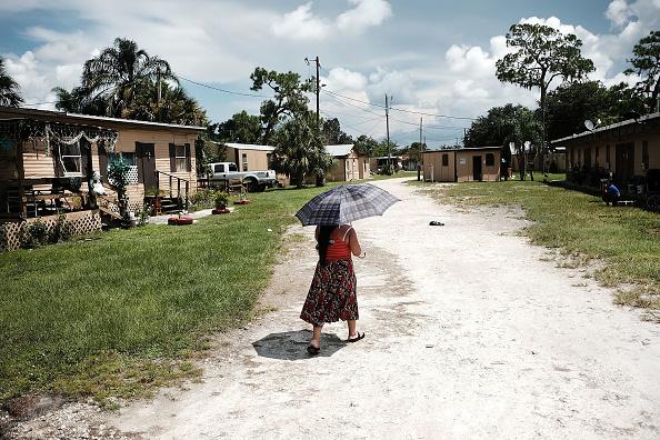 農村の風景「Florida Farming Community Still Struggles One Year After Hurricane Irma」:写真・画像(7)[壁紙.com]