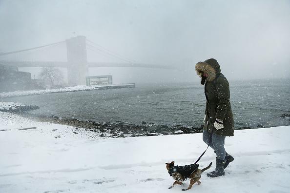 雪「Massive Snowstorm Brings Up To Foot Of Snow To Large Swath Of Northeast」:写真・画像(10)[壁紙.com]
