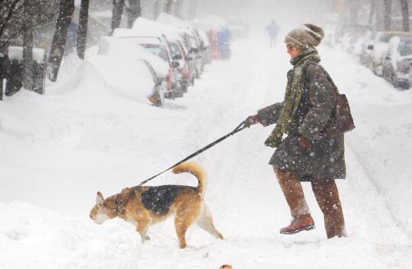 Snow「Winter Storm Hits East Coast 」:写真・画像(13)[壁紙.com]