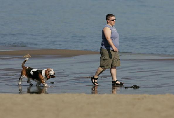 Heavy「Obesity Epidemic Hits California」:写真・画像(16)[壁紙.com]