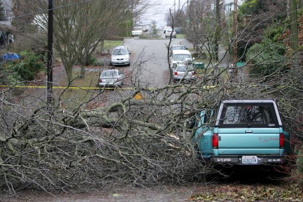 Pacific Northwest「Major Storm Hammers Pacific Northwest」:写真・画像(19)[壁紙.com]