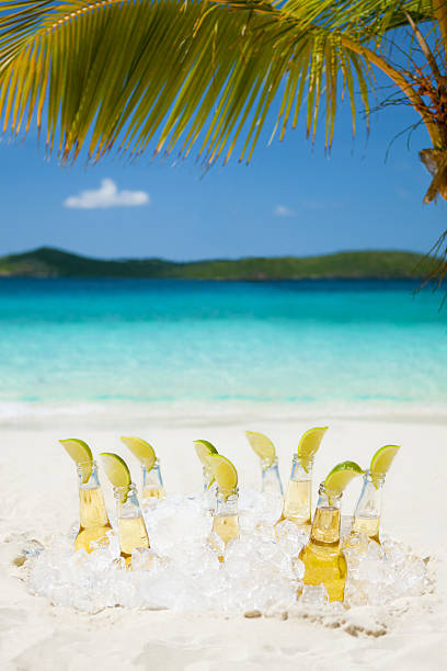 ice cold beers with limes under the palm tree:スマホ壁紙(壁紙.com)