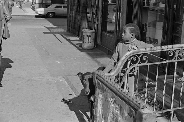 Males「Harlem Street」:写真・画像(3)[壁紙.com]
