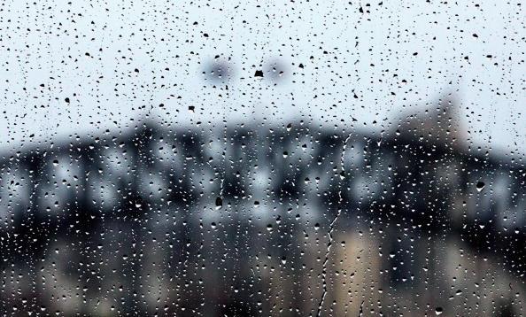 Perching「Wild Weather Hits Sydney」:写真・画像(4)[壁紙.com]