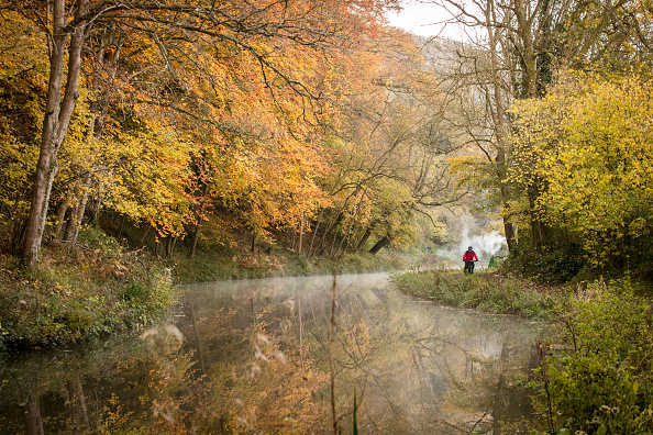 秋「Autumn Colours As Temperatures Drop Across The UK」:写真・画像(17)[壁紙.com]