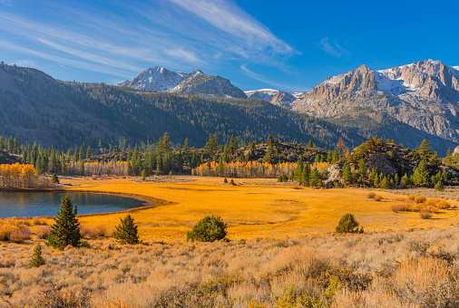 Aspen Tree「Gull Lake is surrounded by fall color (P)」:スマホ壁紙(7)