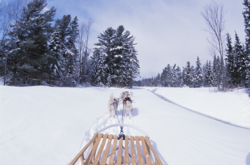 Snow sled「Huskies pulling sled through snow」:スマホ壁紙(5)