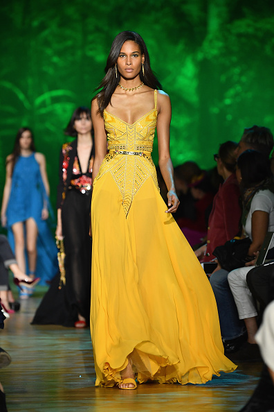 Elie Saab - Designer Label「Elie Saab : Runway - Paris  Fashion Week Womenswear Spring/Summer 2018」:写真・画像(5)[壁紙.com]