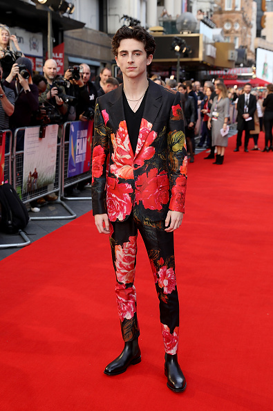 "Timothée Chalamet「""Beautiful Boy"" UK Premiere -  62nd BFI London Film Festival」:写真・画像(5)[壁紙.com]"