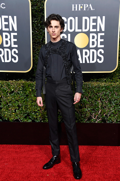Timothée Chalamet「76th Annual Golden Globe Awards - Arrivals」:写真・画像(0)[壁紙.com]
