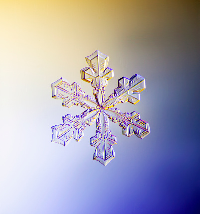 雪の結晶「Photo-microscope view of a real snowflake showing the classic 6-sided star shape.」:スマホ壁紙(9)