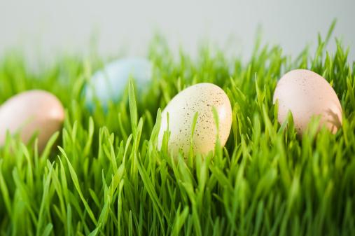 イースター「Decorated eggs in grass」:スマホ壁紙(1)