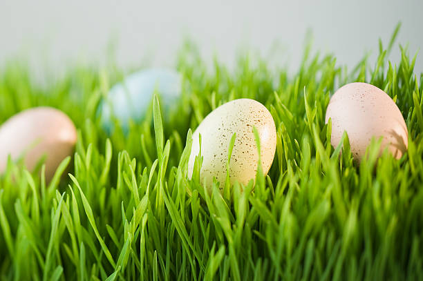Decorated eggs in grass:スマホ壁紙(壁紙.com)