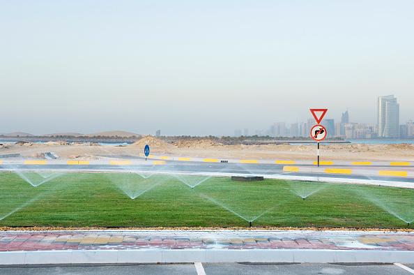 Grass「Lawns being watered, Marina Mall, Abu Dhabi」:写真・画像(11)[壁紙.com]