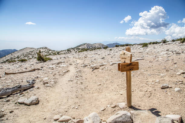 Signpost on trail for San Gorgonio Mountain and Mineshaft Flat  near summit of Mt. San Gorgonio:スマホ壁紙(壁紙.com)