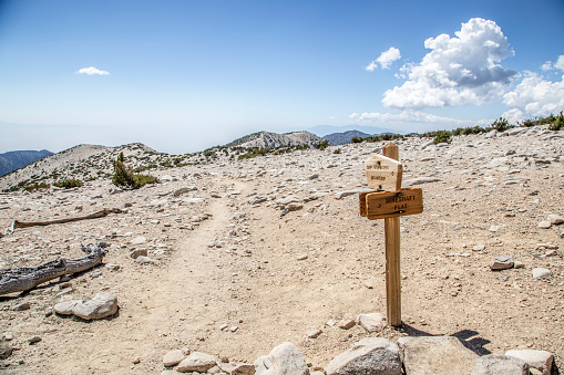 Footpath「Signpost on trail for San Gorgonio Mountain and Mineshaft Flat  near summit of Mt. San Gorgonio」:スマホ壁紙(18)