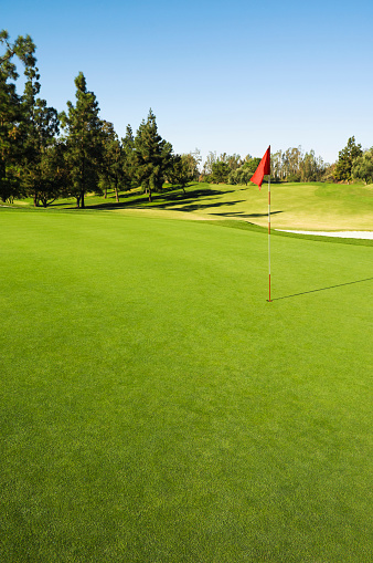Sports Target「Flag in hole on golf course」:スマホ壁紙(2)
