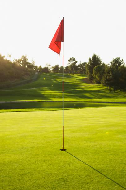 Flag in hole on golf course:スマホ壁紙(壁紙.com)