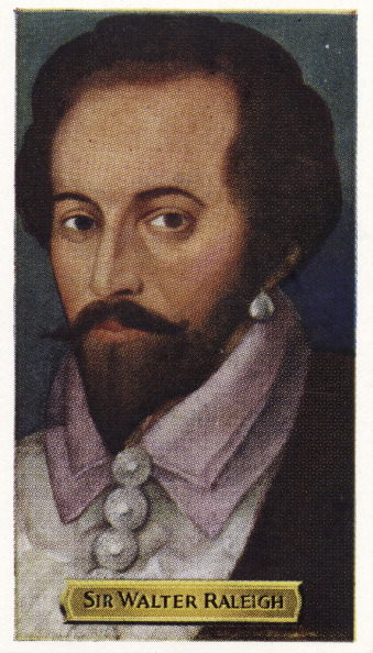 Colony - Group of Animals「Sir Walter Raleigh - English explorer.」:写真・画像(12)[壁紙.com]