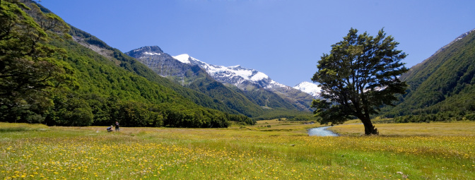 Mt Aspiring「マウントアスパイアリング国家公園、ニュージーランド」:スマホ壁紙(5)