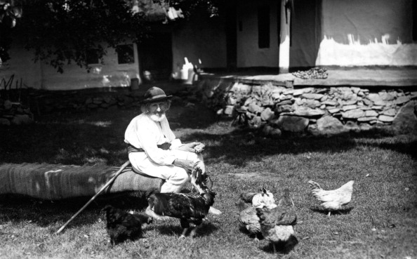 Hen「Old man feeding chickens, Bistrita Valley, Moldavia, north-east Romania, c1920-c1945. Artist: Adolph Chevalier」:写真・画像(11)[壁紙.com]