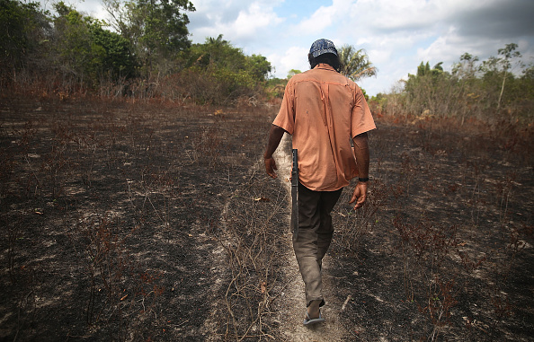 Latin America「Quilombo Residents Threatened By Ranching And Logging In Brazil's Amazon」:写真・画像(13)[壁紙.com]