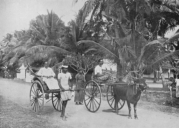 Passenger「'Rickshaw and Racing Hackery', c1890,」:写真・画像(5)[壁紙.com]