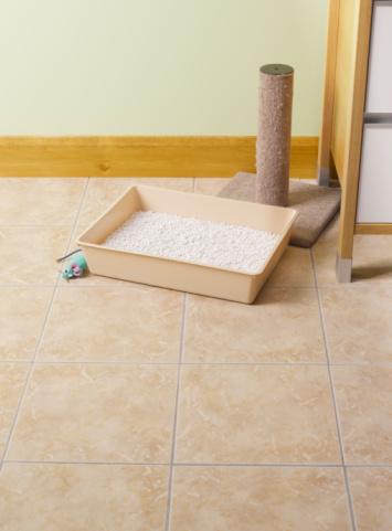 Litter Box「Cat litter tray.」:スマホ壁紙(7)