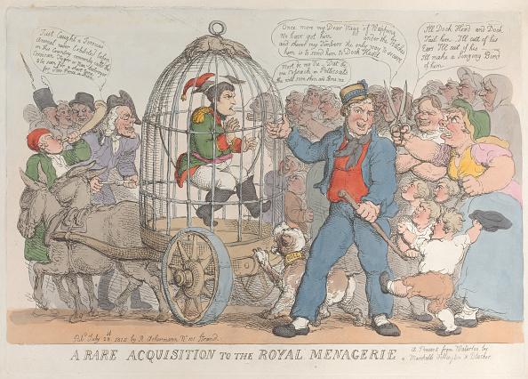 Risk「A Rare Acquisition To The Royal Menagerie」:写真・画像(5)[壁紙.com]