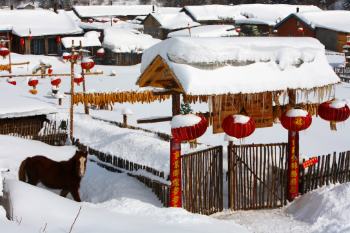 Chinese Lantern「Snow Village in Mudanjiang,Heilongjiang,China」:スマホ壁紙(17)