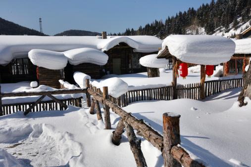 Chinese Lantern「Snow Village in Mudanjiang,Heilongjiang,China」:スマホ壁紙(16)