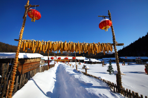Chinese Lantern「Snow Village in Mudanjiang,Heilongjiang,China」:スマホ壁紙(14)