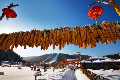 Chinese Lantern「Snow Village in Mudanjiang,Heilongjiang,China」:スマホ壁紙(7)