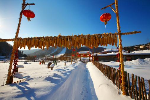 Chinese Lantern「Snow Village in Mudanjiang,Heilongjiang,China」:スマホ壁紙(10)