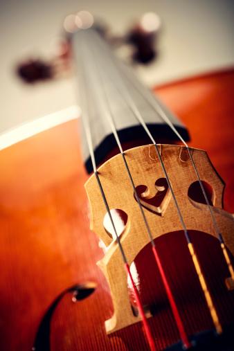 Cello「Close up shot of cello bridge」:スマホ壁紙(17)