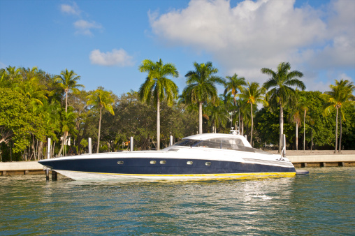 Miami Beach「Blue and white luxury boat docked near palms」:スマホ壁紙(2)