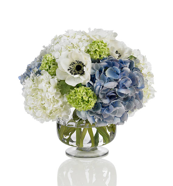 Blue and white hydrangea bouquet with poppies on white background:スマホ壁紙(壁紙.com)