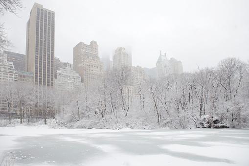 雪「ニューヨークの冬」:スマホ壁紙(11)