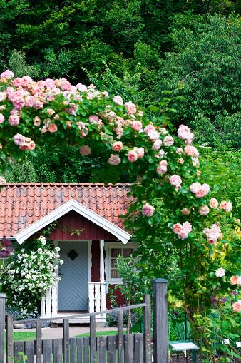 Botanical Garden「Idyllic red cottage in botanical garden」:スマホ壁紙(19)