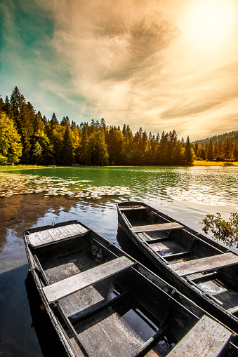 France「Wonderful old weathered boat on riverbank of small altitude french Genin lake in middle of pine forest in Jura mountains」:スマホ壁紙(15)