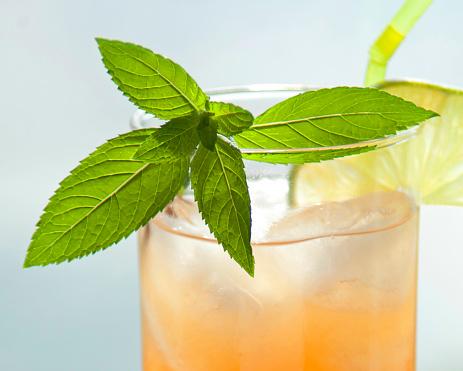 Ice Tea「Sea Breeze vodka cocktail with sprig of mint closeup」:スマホ壁紙(9)