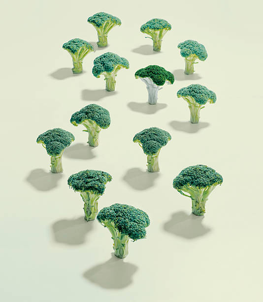 A group of broccoli:スマホ壁紙(壁紙.com)