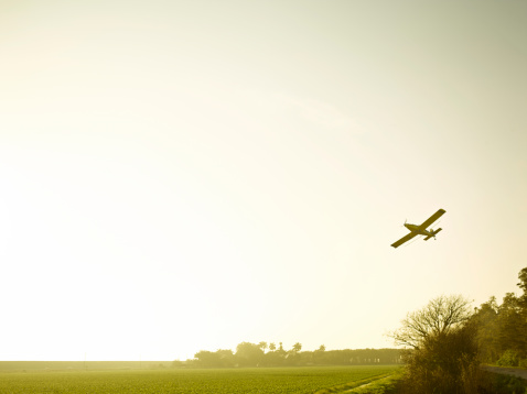 Insecticide「Florida crop duster in flight」:スマホ壁紙(14)