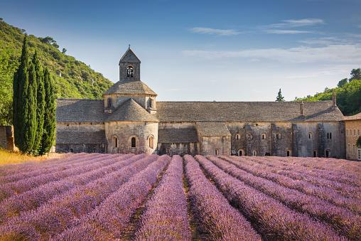 Abbey - Monastery「Abbeye de Senanque Lavender Field Provence in Summer France」:スマホ壁紙(14)