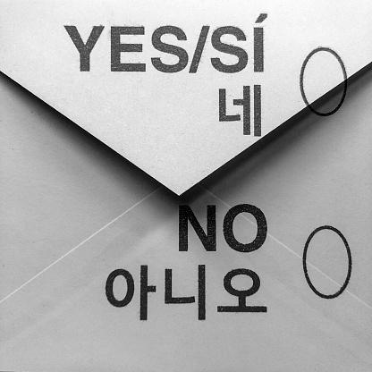Voting Ballot「Voting by mail」:スマホ壁紙(14)
