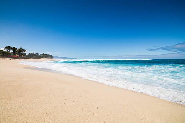 ハワイの夢のビーチ:スマホ壁紙(壁紙.com)