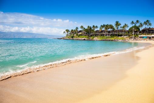 Bay of Water「Dream Beach Napili Bay Maui Hawaii」:スマホ壁紙(11)