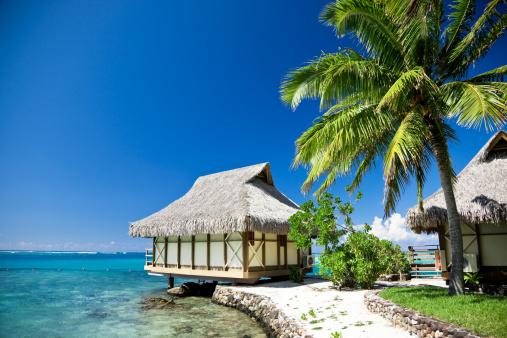 豪華 ビーチ「夢のビーチモーレア島ツーリストリゾート」:スマホ壁紙(13)