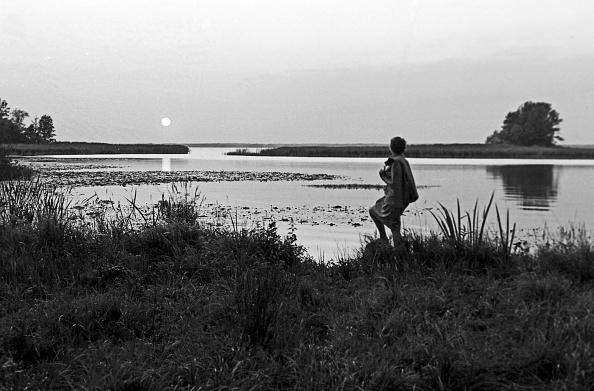 Horizon「Journey Through Sweden」:写真・画像(6)[壁紙.com]